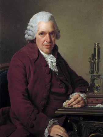 Portrait of Daubenton by Alexandre Roslin