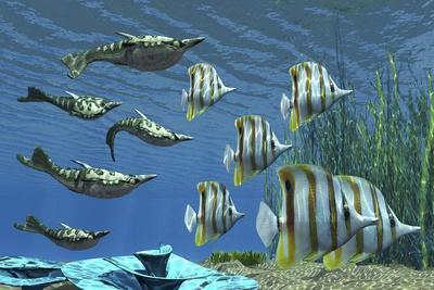 Prehistoric Pteraspis Jawless Fish Swimming with a Group of Chelmon Butterflyfish