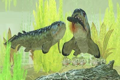 Rhizodus Hibberti, an Extinct Group of Carboniferous Lobe-Finned Fish