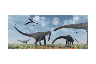 A Herd of Giant Diplodocus Dinosaurs Grazing