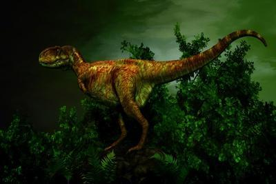 Pycnonemosaurus Was a Carnivorous Dinosaur from the Late Cretaceous Period