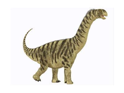 A Juvenile Camarasaurus Sauropod Dinosaur That Lived During the Jurassic Age