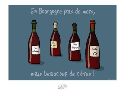 Tipe taupe - En Bourgogne, pas de mers