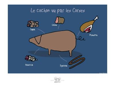 Broutch - Cochon vu par les Corses