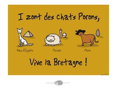 Oc'h oc'h. - Les chats Porons