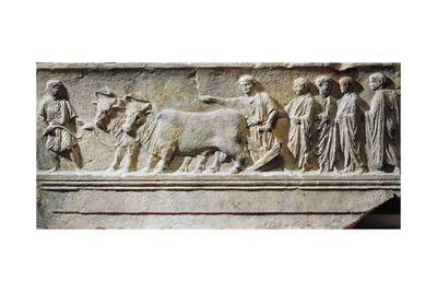 "Limestone ""Sulcus Primigenius"" Relief, Representing Ceremony of Foundation of City of Aquileia"