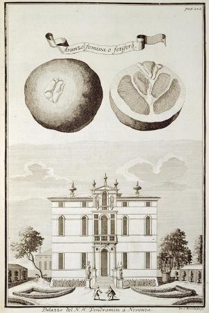 Villa Vendramin in Noventa Padovana