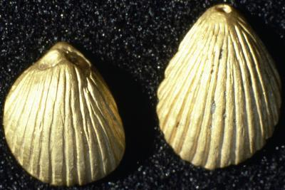 Small, Shell-Shaped Gold Pendants, from Burial Mound in Mining Village in Wadi Terfowi