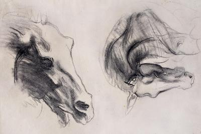 Two Studies of Horses' Heads