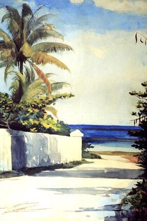 Road in Nassau, 1898-99