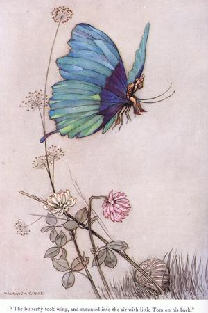 The Butterfly Took Wing