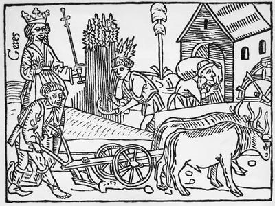 Medieval Agriculture Farm Scene