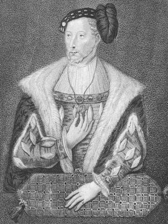 Portrait of James V, King of Scots