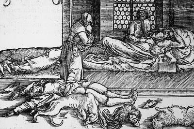 Plague Victim Dying