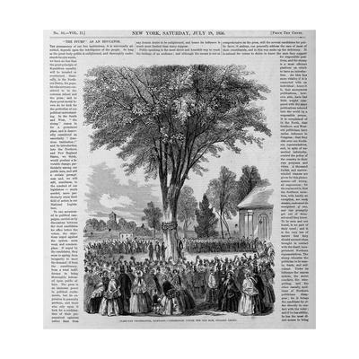 Class-Day Celebration, Harvard.-- Ceremonies under the Old Elm, College Green.