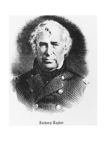Bust Illustration of Zachary Taylor