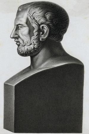 Profile Statuette Depiction of Greek Philosopher Theophrastus