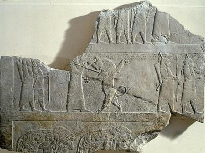 Hunting Lion, Relief from Ashurbanipal's Palace in Nineveh, Iraq