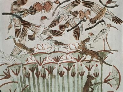 Egypt, Ancient Thebes, Shaykh 'Abd Al-Qurnah, Mural of Marshland Fowl and Cats at Tomb of Menna