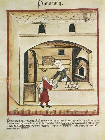 Italy, Millet Bread, Miniature