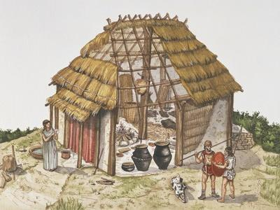 Cutaway Drawing Representing Reconstruction of Dwelling Hut