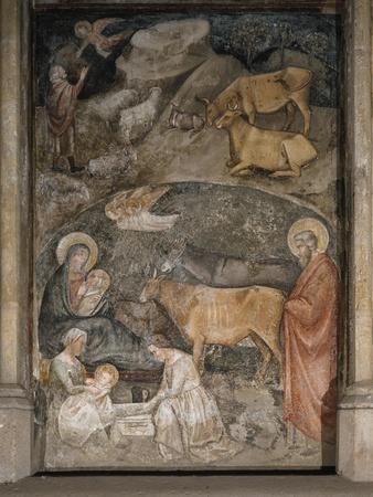 Nativity, Basilica of San Lorenzo Maggiore, Naples, Campania, Italy