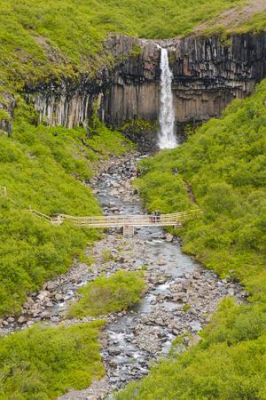Iceland. Vatnajokull NP. Skaftafell Waterfall and Columnar Basalt