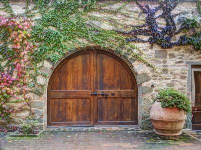 Italy, Tuscany, Chianti Region. This Is the Castello D'Albola Estate