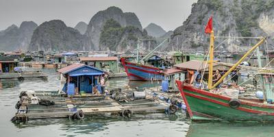 Vietnam, Cat Ba Island, Ha Long Bay. Boats and Floating Houses