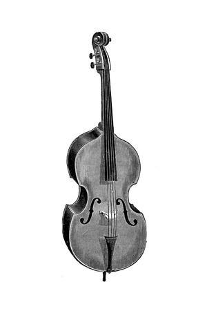 Wurlitzer Double Bass