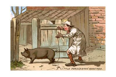 Pig Farmer Persuading a Pig to Move