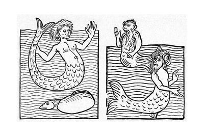 Medieval Mer-Folk