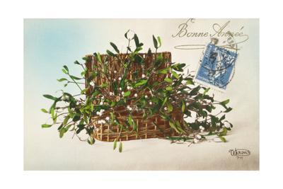 Hamper of Mistletoe