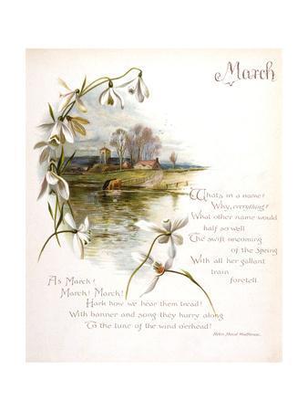 Book Illustration - April