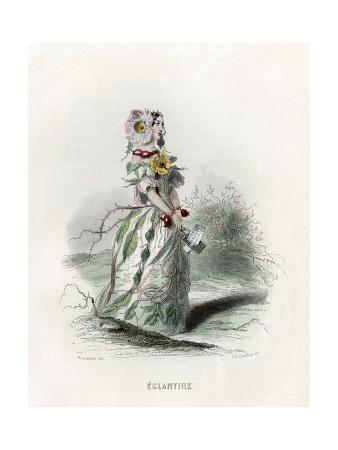 Grandville Eglantine
