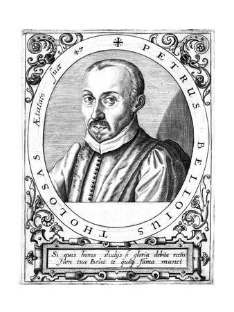 Pierre Belloi, Lawyer