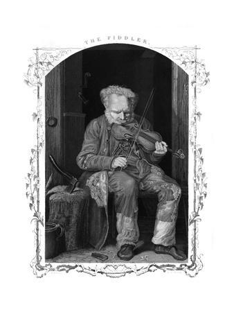 Fiddler in Cottage