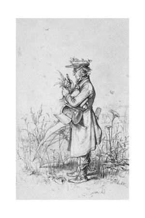 Botanist at Work