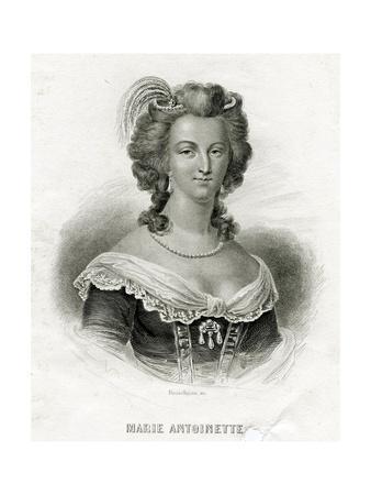 M Antoinette, Bosselmann