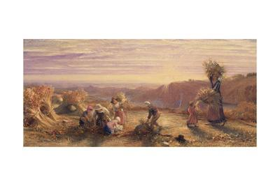 Sunset over the Gleaning Fields, 1855