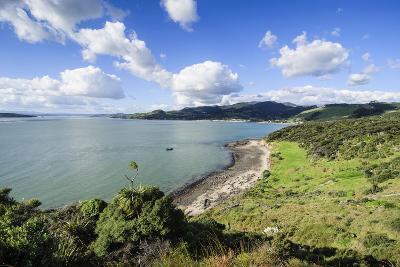 View of the Arai-Te-Uru Recreation Reserve, South End of Hokianga Harbour, Northland