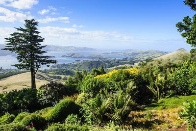 View from Larnach Castle over the Otago Peninsula, South Island, New Zealand, Pacific
