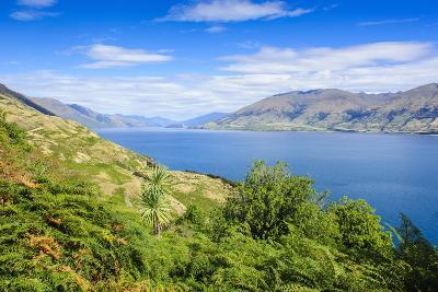 Lake Hawea, Haast Pass, South Island, New Zealand, Pacific