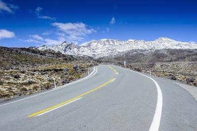 Road Leading to Mount Ruapehu, Tongariro National Park, North Island, New Zealand, Pacific