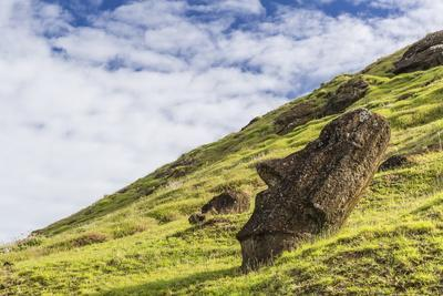 Moai Sculptures in Various Stages of Completion at Rano Raraku