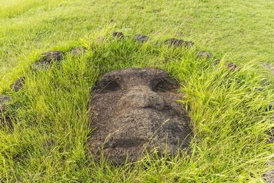 Fallen Moai Head at the Archaeological Site at Ahu Vinapu