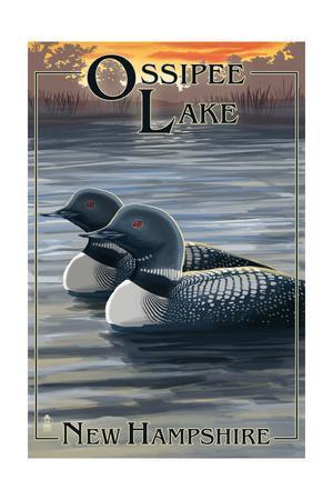 Ossipee Lake, New Hampshire - Loon Family