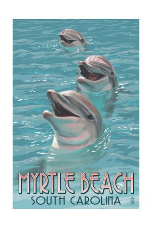 Myrtle Beach, South Carolina - Dolphins