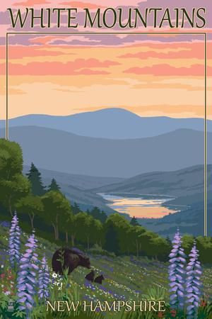 White Mountains, New Hampshire - Bears and Spring Flowers