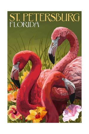 St. Petersburg, Florida - Flamingos